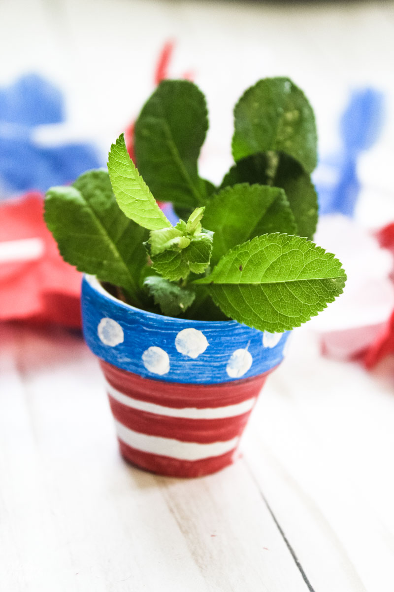 Patriotic Flower Pot Craft with a plant planted in it