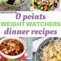 Zero Point Weight Watchers Dinner Recipes